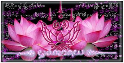 Lotus, l'élévation spirituelle