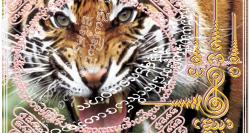 yantra du tigre