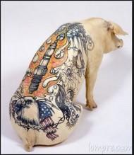 pig-tattoo